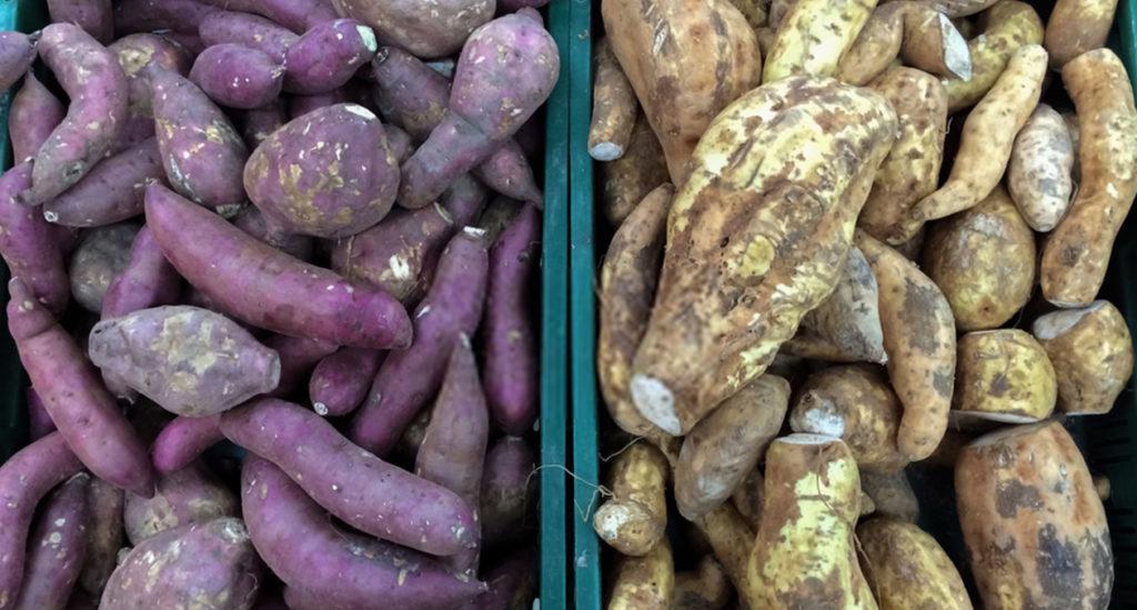 Cassavas and sweet potatoes