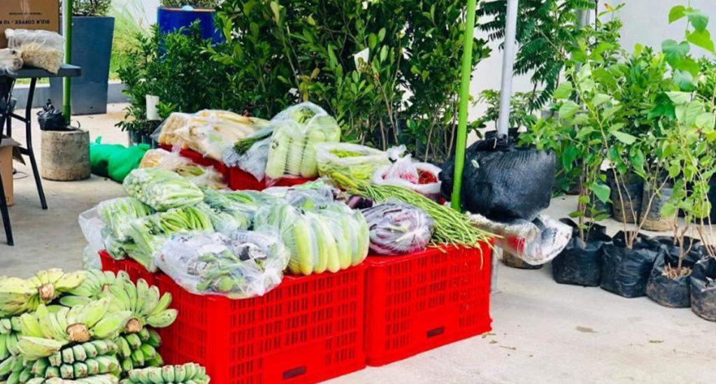 Fruits and vegatables on display at Petron's Kadiwa Market initiative